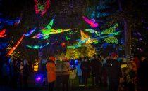 Jyväskylä «City of Light» 2021 – Open call for artists